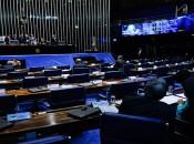 Pleno do Senado vota em primeiro turno PEC 50/2016, que regulamenta a Vaquejada (Foto: Marcos Oliveira/Agência Senado)