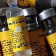 Vacina é a principal forma de combate à febre amarela Foto: Divulgação/Prefeitura de Pitangueiras (SP)