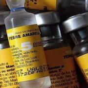 vacinafebreamarelaagbrasil
