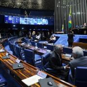 Alguns senadores discordam das propostas do Executivo  (Foto: Marcos Oliveira/Agência Senado)