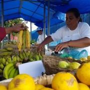 Evento ocorrerá no pátio externo da Seagri e é uma iniciativa do Governo de Alagoas. Ascom