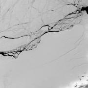 Imagem de divulgação da Nasa mostra uma das rachaduras na barreira de gelo Larsen C, que se desprendeu na AntártidaImagem de divulgação/Nasa/EPA/Agência Lusa