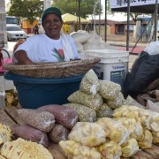 Mulheres assentadas levam aos maceioenses sua produção no campo Ascom Iteral