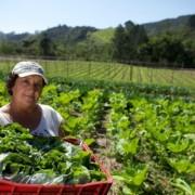 Assistência técnica para agricultores familiares é o foco das discussões da 28ª assembleia da Asbraer.  Ascom MDS