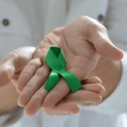Ação educativa para orientar a população sobre a importância de doar órgãos e salvar vidas. Carla Cleto