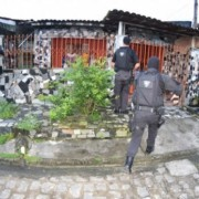 Agentes cumpriram diversos mandados de prisão e busca e apreensão na capital alagoana Ascom.  PC