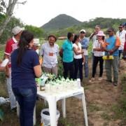 Dia de Campo leva aos pequenos produtores rurais novas tecnologias e mais informações que os beneficiam em suas atividades no campo Foto: Ascom/Seagri