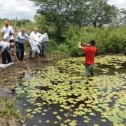 Política de distribuição de pescado tem levado renda extra aos agricultores familiares e fixando o homem no campo (Foto: Ascom/Juceal)