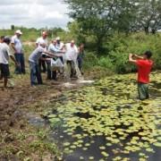 Seagri distribuiu 40 mil alevinos da espécie tilápia em Olho D'Água das Flores Ascom