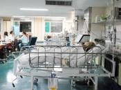 procedimentos para determinar a morte encefálica devem ser iniciados em todos os pacientes que apresentam estado de coma não perceptivo