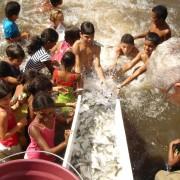 peixamentos-da-codevasf_8519390526_o