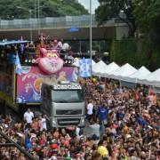 Milhares de foliões acompanharam os desfiles na Avenida 23 de MaioRovena Rosa/Agência Brasil